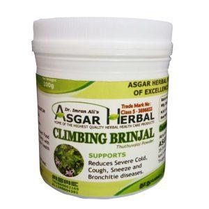 Climbing-Brinjal-Powder
