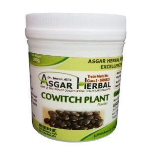 Cowitch-Plant-Powder