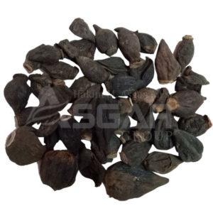 Salab-Misri-Raw-Product-wholesale-and-retail-300x300
