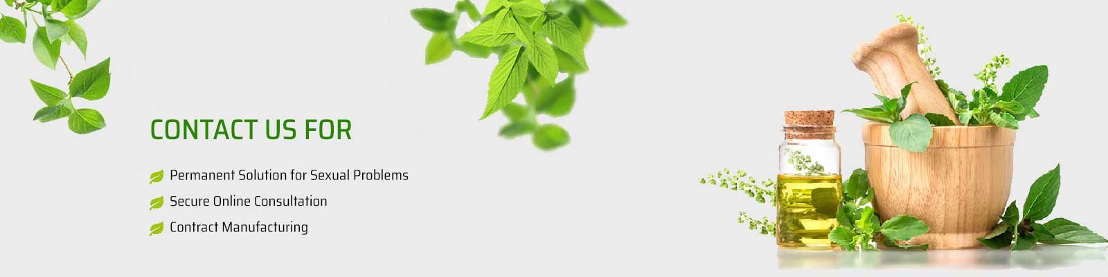 Health Benefits of Holy Basil – Tulsi Leaves
