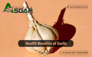 Garlic sexual health